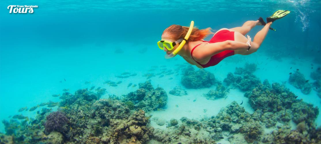 Hurghada Snorkeling Excursion Day Tour - Tours From Hurghada