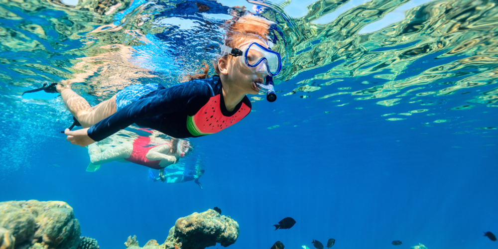 Red Sea Snorkeling - El Gouna Snorkelling Excursion - Tours From Hurghada