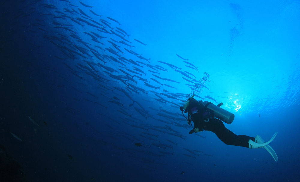 Scuba diving in Hurghada - Tours From Hurghada
