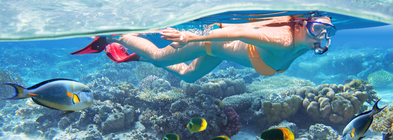 Snorkeling - Hurghada Snorkelling Excursion - Tours From Hurghada