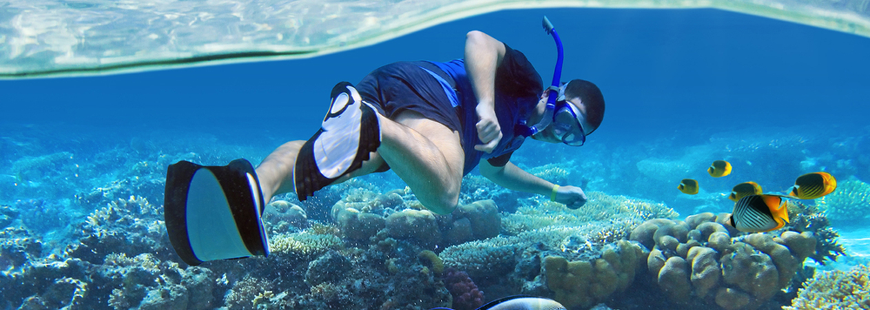 Snorkeling Trip - Hurghada Snorkelling Excursion - Tours From Hurghada