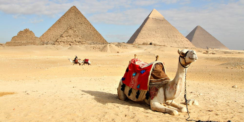 Pyramids of Giza - Tour to Cairo and Giza Pyramids from Makadi by Flight - Tours From Hurghada