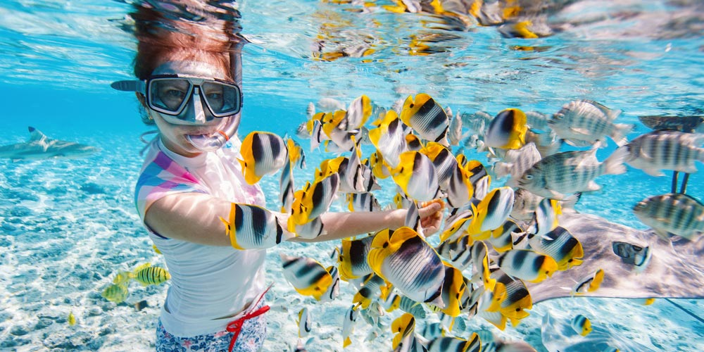 Snorkeling Excursion in Makadi - Tours from Hurghada