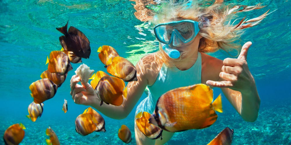Snorkeling - Snorkeling Excursion in Makadi - Tours from Hurghada