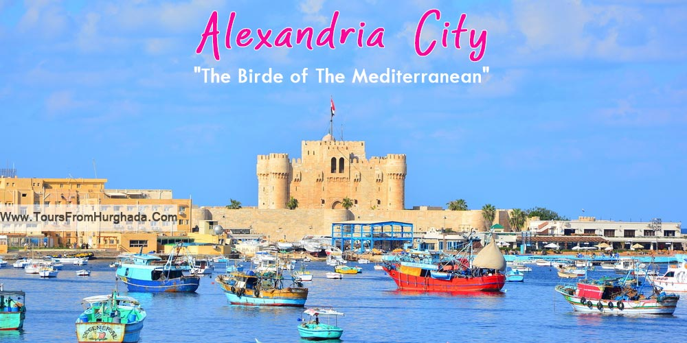 Alexandria City - Tours from Hurghada