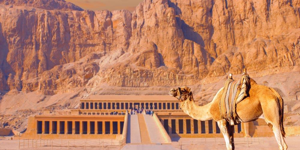 Den Hatschepsut Tempel - 2 Tägiger Ausflug nach Luxor von EL Gouna - Tours from Hurghada