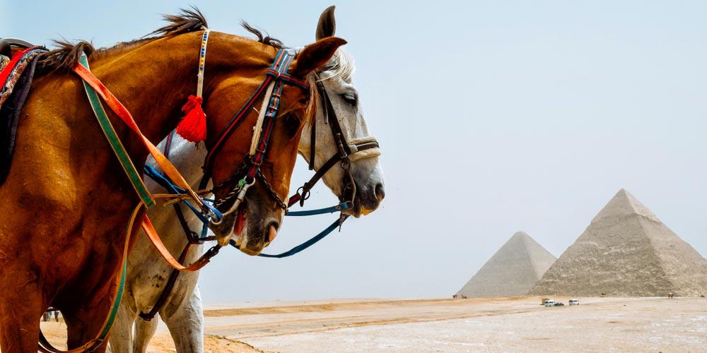 Die Pyramiden von Gizeh - Ägypten Highlights von Hurghada - Tours from Hurghada