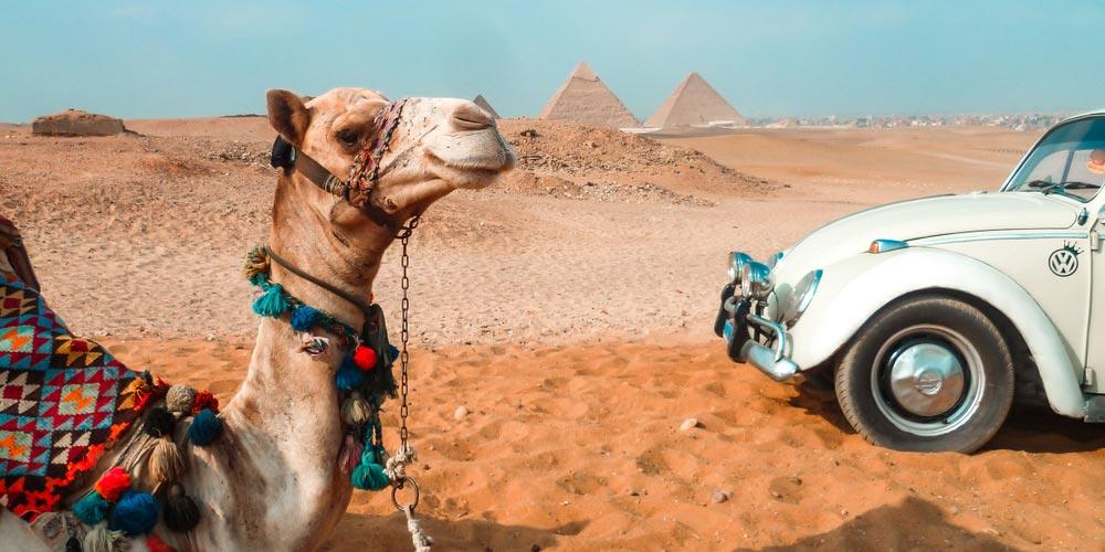Die Pyramiden von Gizeh - Ausflug nach Kairo vonMakadi mitEinem Fahrzeug - Tours from Hurghada