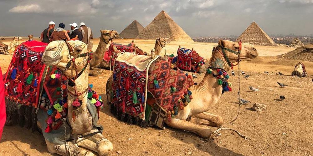Gizeh Pyramiden - Ausflug nach Kairo von Hurghada mitFlug - Tours from Hurghada