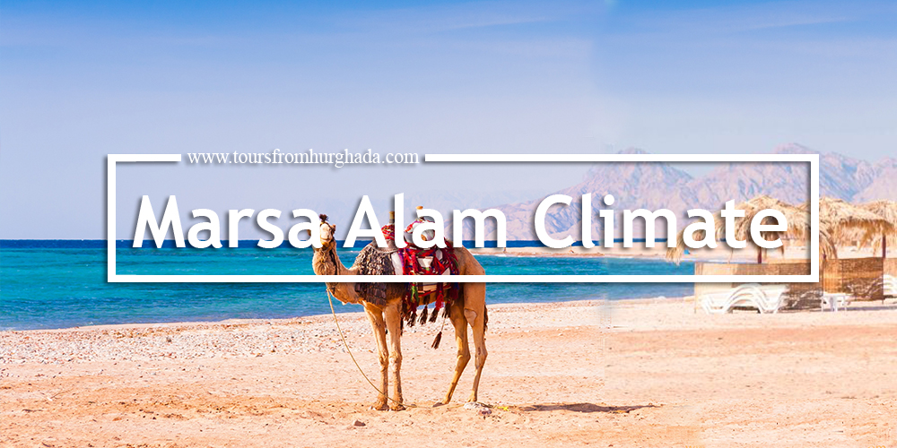 Marsa Alam City Climate - Marsa Alam Egypt - Things to Do in Masra Alam