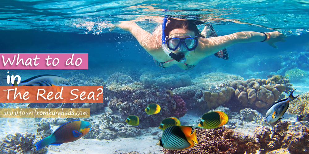 The-Red-Sea-Activities-Tours-from-Hurghada