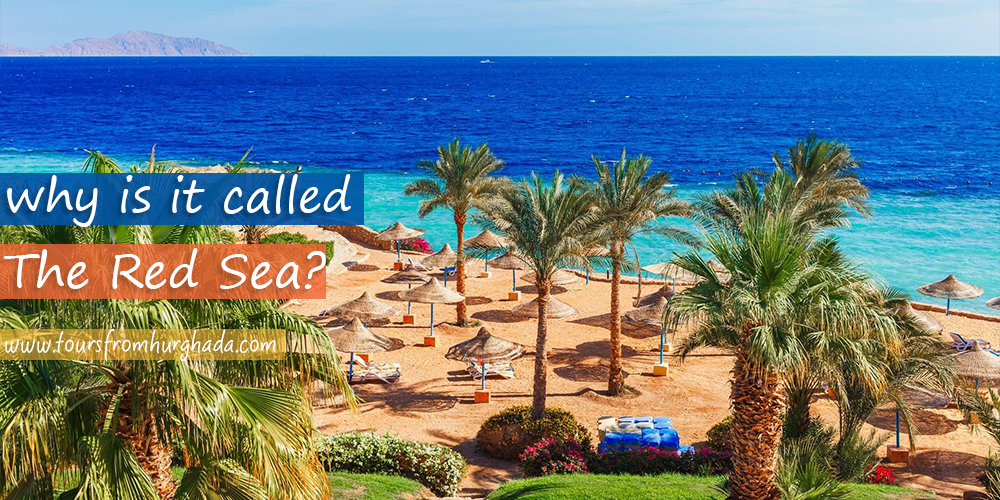 The-Red-Sea-Name-Tours-from-Hurghada