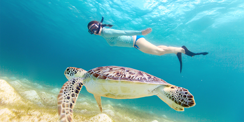8 Days Cairo and Hurghada Holiday Tours From Hurghada