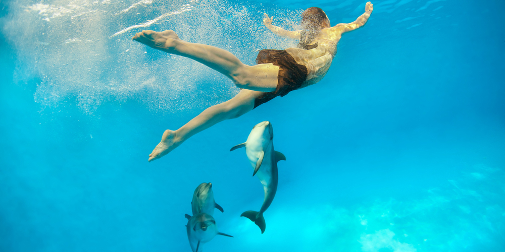 Dolphin House Day Tour in Hurghada - Tours From Hurghada
