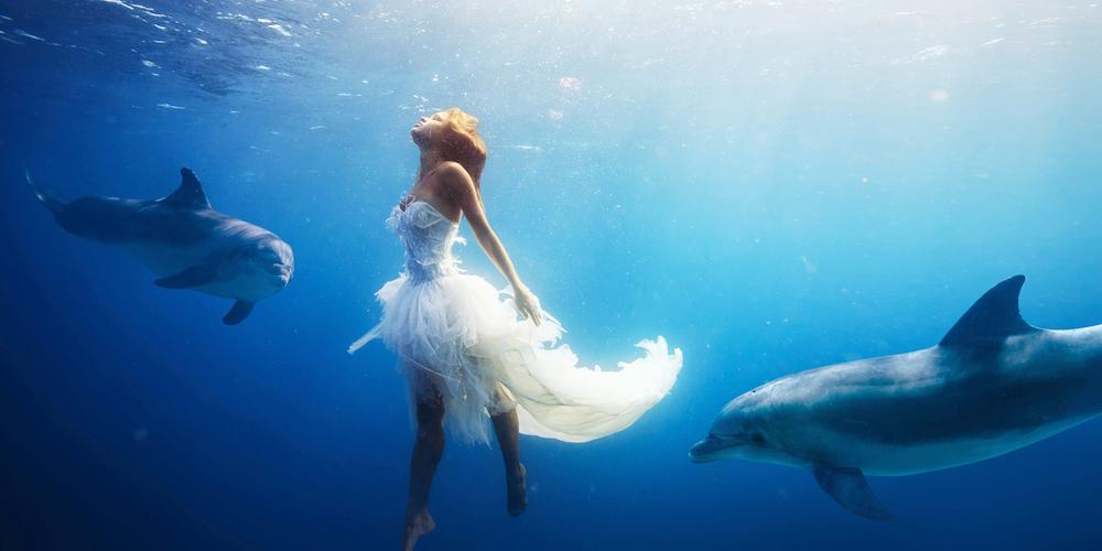 Dolphin House Hurghada Day Tour