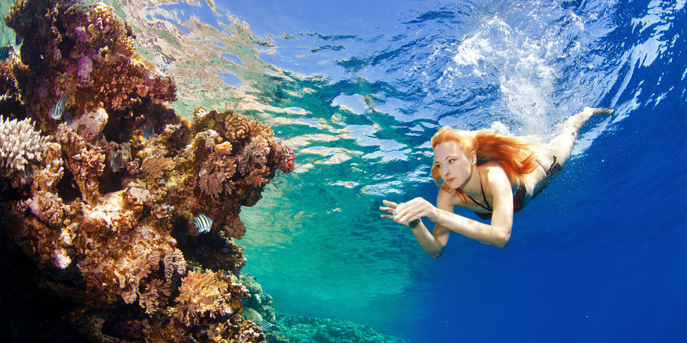 Giftun Island Snorkeling Tours in Hurghada - Tours From Hurghada