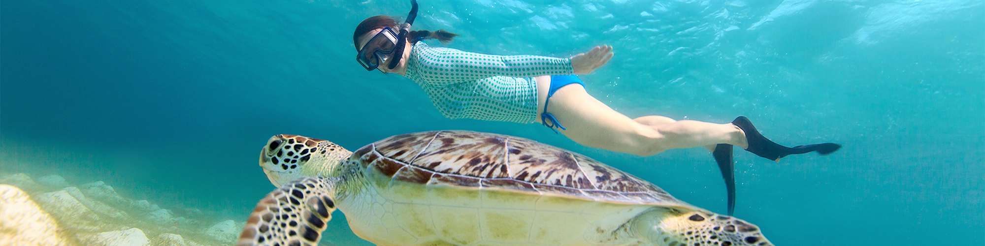Hurghada Snorkeling Trips - Tours From Hurghada