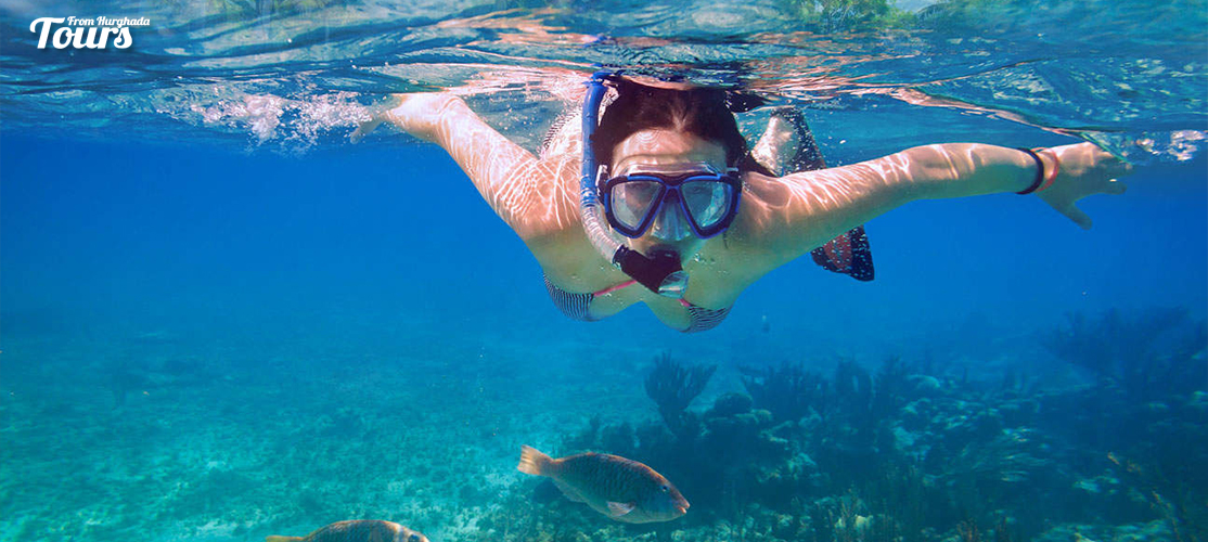 Satayh Dolphin Reef Snorkeling Trip from Marsa Alam - Tours From Hurghada