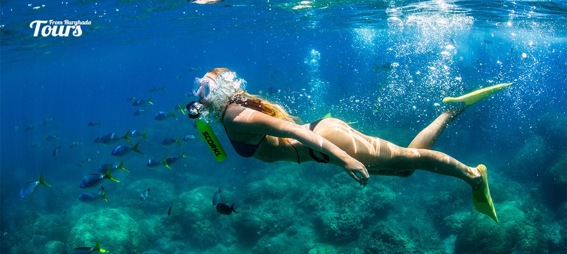 Mahmya Island Snorkeling Trip From Hurghada - Tours From Hurghada