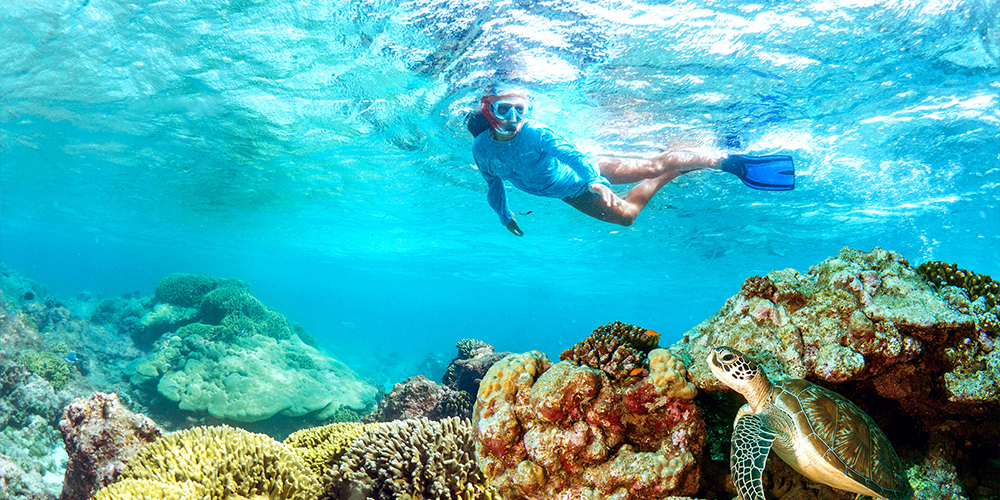 Port Ghalib Excursions - Tours From Hurghada