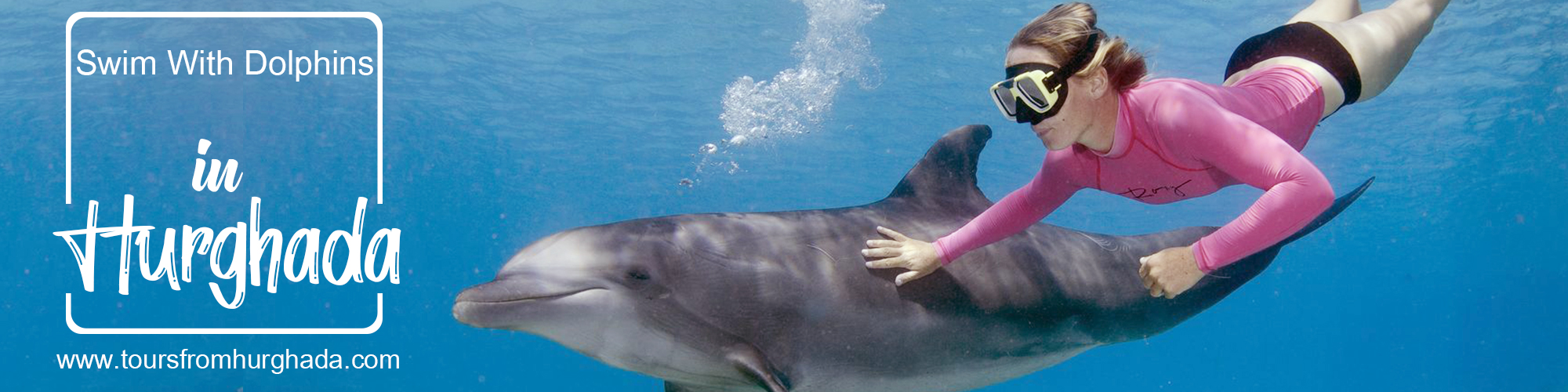 Swim With Dolphins Hurghada Tours - Tours From Hurghada