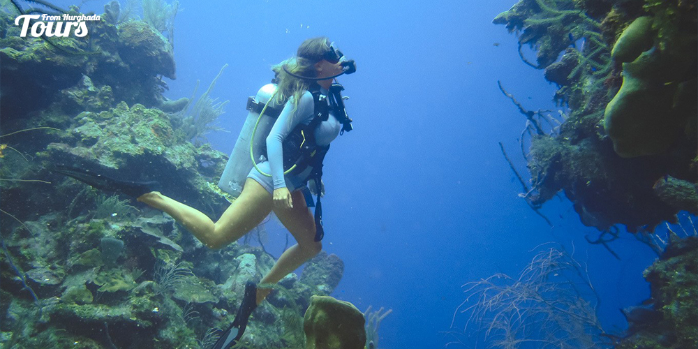 Diving - Things to Do in Hurghada - Tours From Hurghada