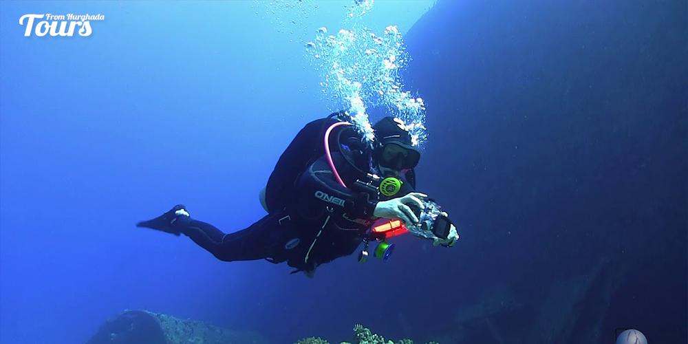 El-Ark - Hurghada Diving Sites - Tours From Hurghada