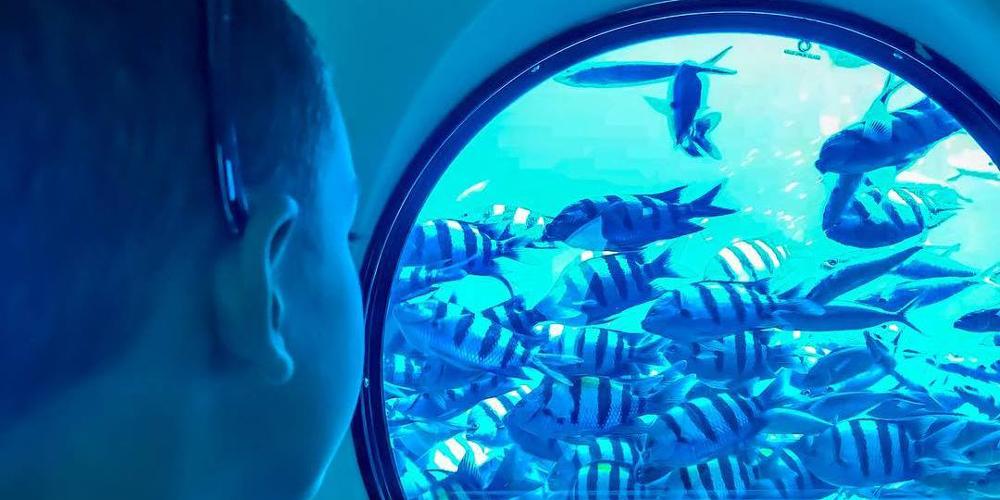 El Gouna Sindbad Submarine - Tours from Hurghada