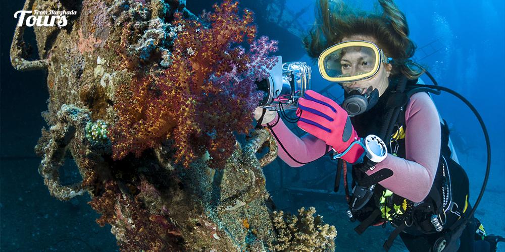 Gota Makadi - Hurghada Diving Sites - Tours From Hurghada