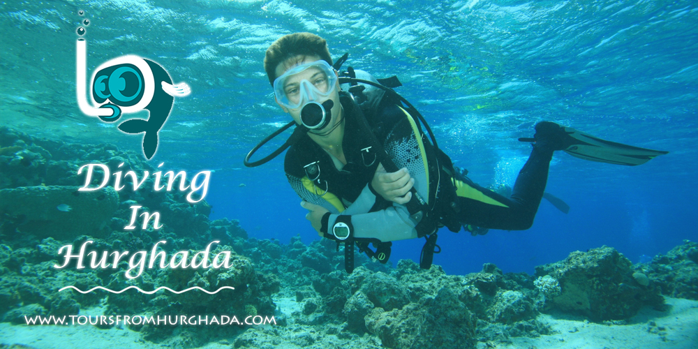 Hurghada Diving Sites - Tours From Hurghada