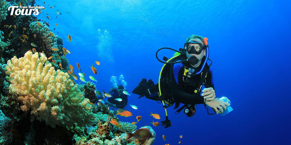 Hurghada Ramada North - Hurghada Diving Sites - Tours From Hurghada
