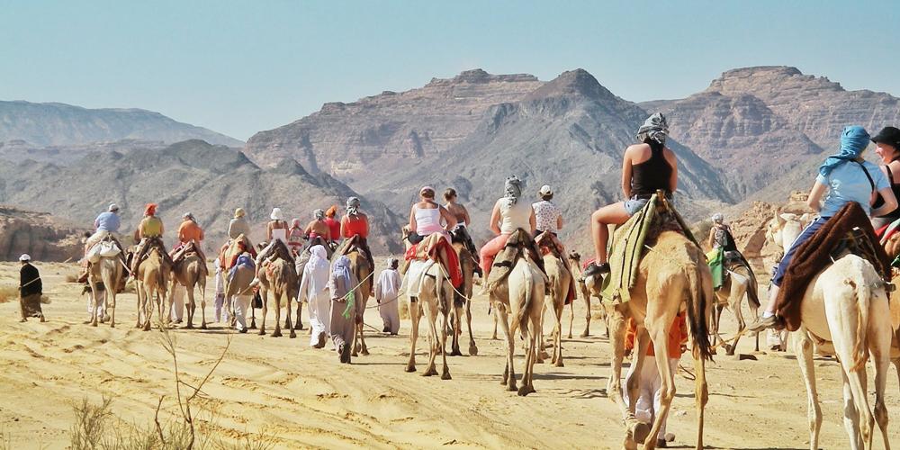 Hurghada Safari Trips - 9 Days Hurghada, Luxor & Abu Simbel Vacation - Tours from Hurghada