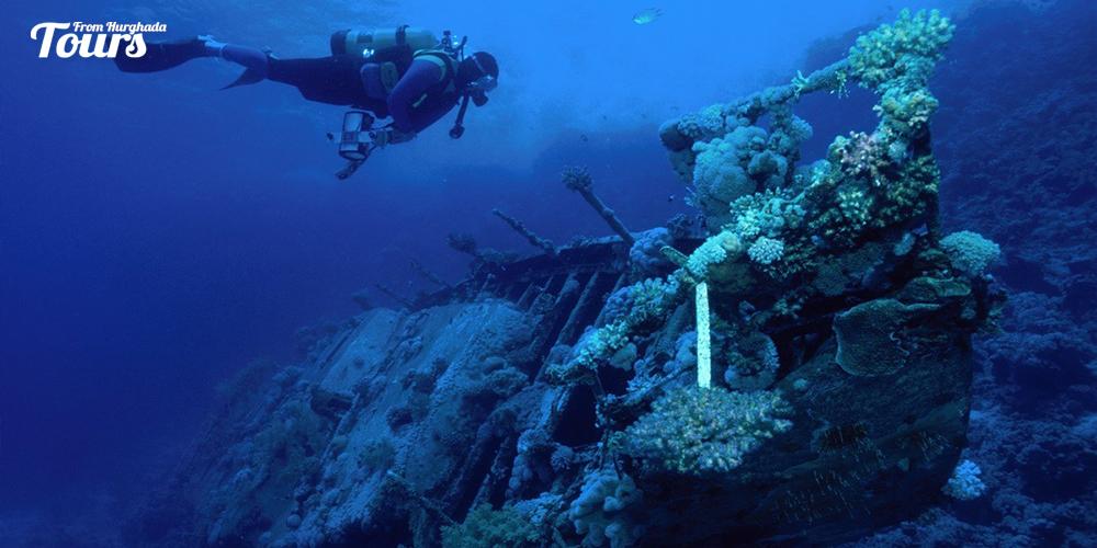 Marsa Abu Galawa - Hurghada Diving Sites - Tours From Hurghada