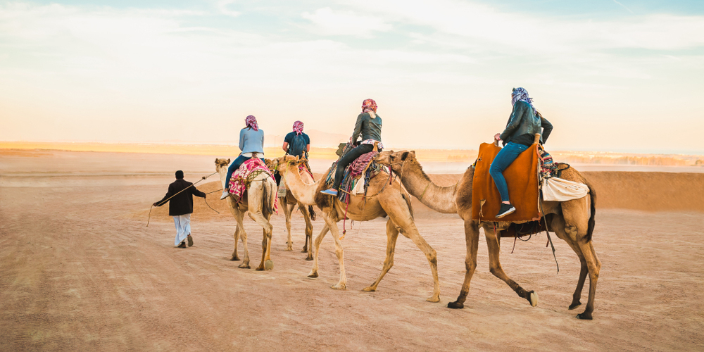 Morning Safari Tour From El Gouna by Quad Bike - Tours from Hurghada
