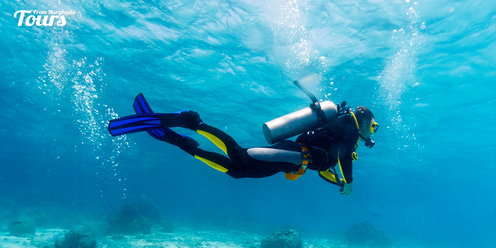 Oberoi House Reef diving - Hurghada Diving Sites - Tours From Hurghada