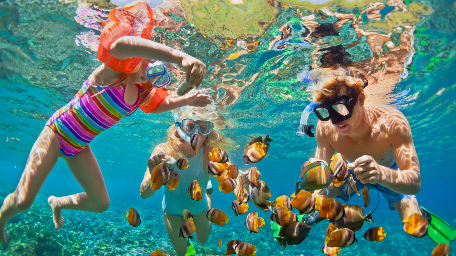 Paradise Island Snorkeling Tours from El-Gouna - Tours from El Gouna