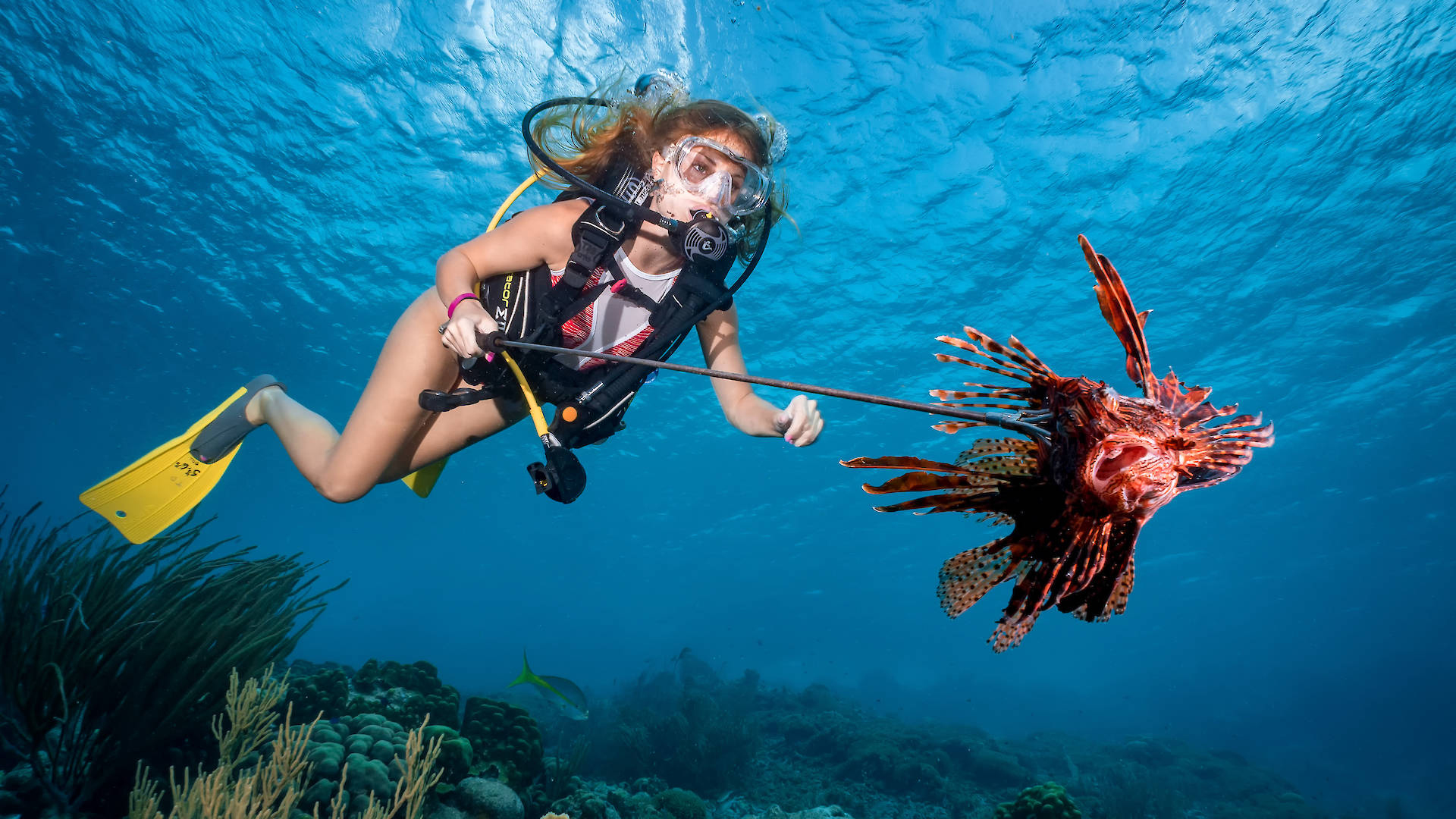 Paradise Island Snorking Excurisons - Tours from Hurghada