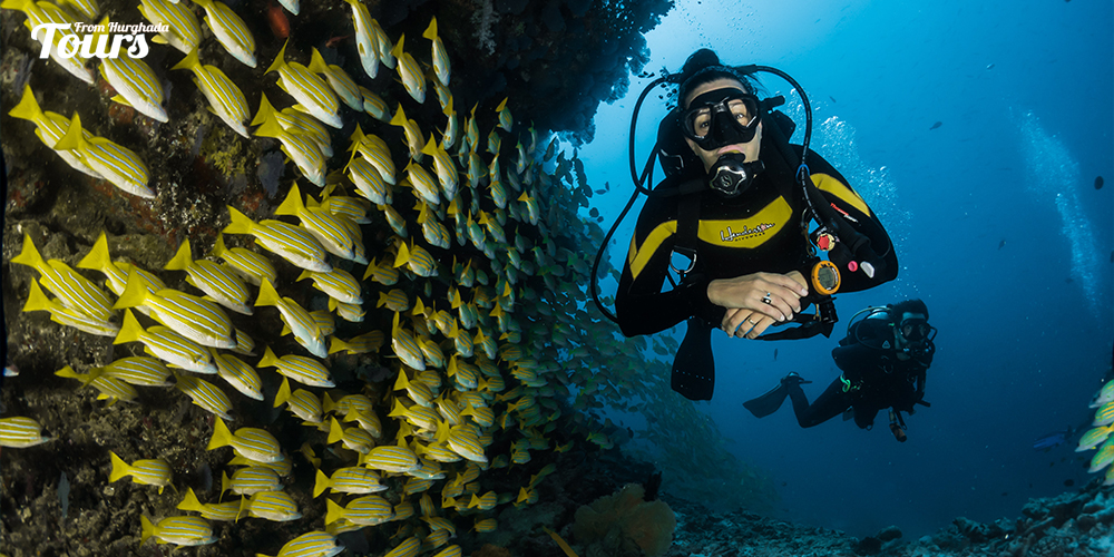 Ramada South - Hurghada Diving Sites - Tours From Hurghada