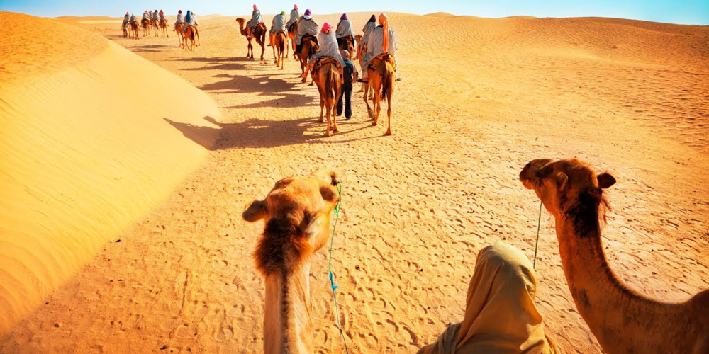 Riding Camel - Sunset Safari Excursions From El Gouna By Quad Bike - Tours from Hurghada
