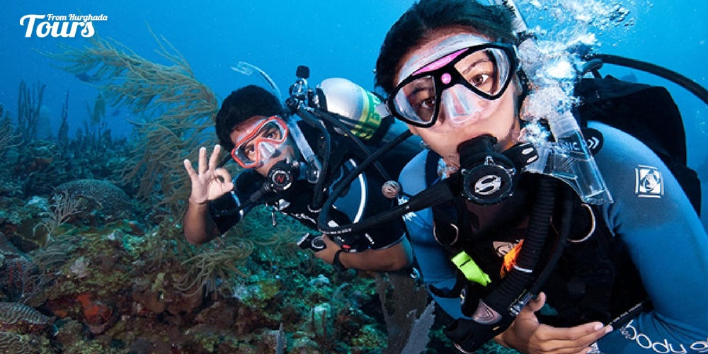 Shabaha - Hurghada Diving Sites - Tours From Hurghada