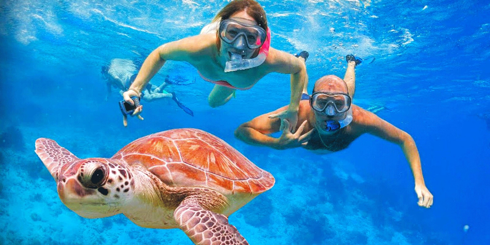Snorkeling Hurghada - 9 Days Hurghada, Luxor & Abu Simbel Vacation - Tours from Hurghada