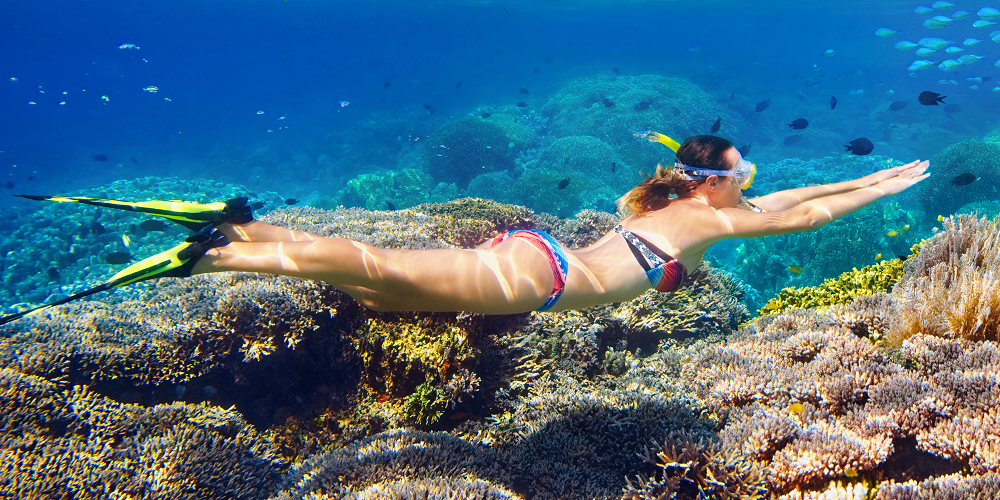 Snorkeling at Sharm El Naga from El Gouna - Tours from Hurghada