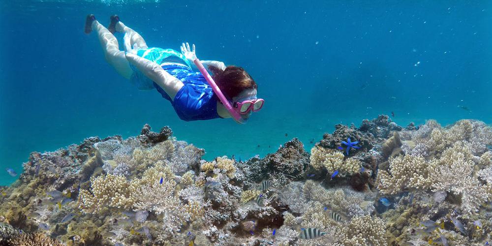 Abu Dabbab Dugong Bay Marsa Alam Snorkeling - Tours From Hurghada
