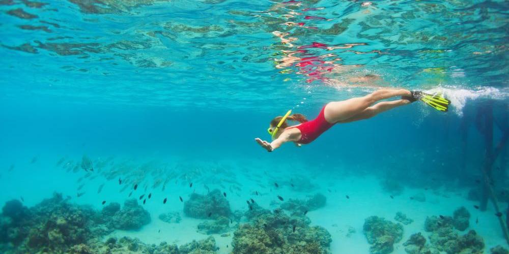 Abu Dabbab Dugong Bay Snorkeling Trip From Marsa Alam - Tours From Hurghada