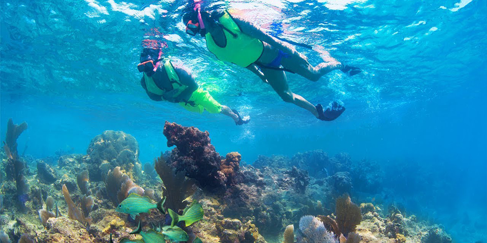 Abu Dabbab Dugong Bay Snorkeling Trips In Marsa Alam - Tours From Hurghada