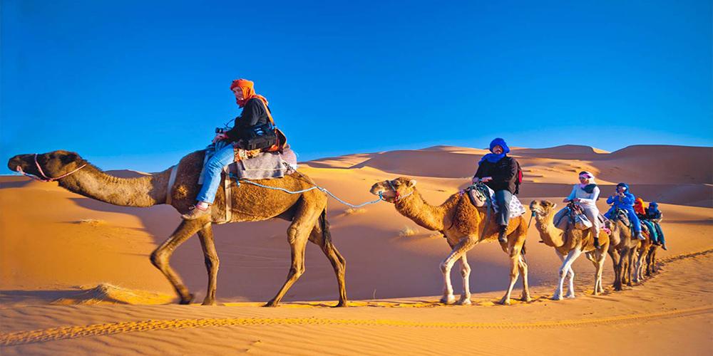 Aladin Safari Tour In Marsa Alam - Tours From Hurghada