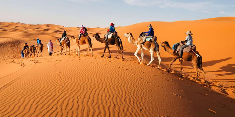 Aladin Safari Trips In Marsa Alam - Tours From Hurghada