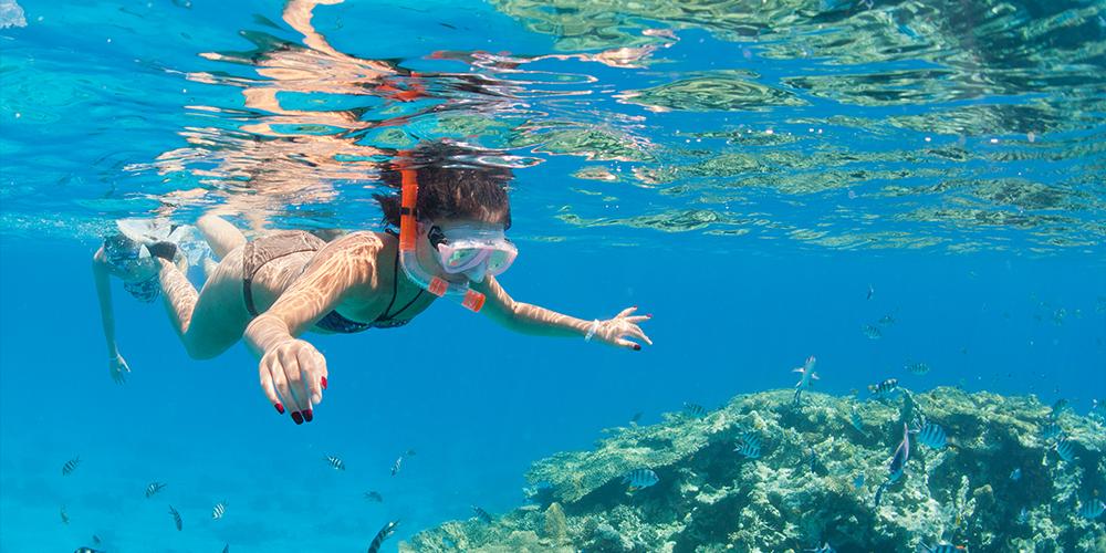 Hamata Island Snorkeling Tour From Marsa Alam - Tours From Hurghada