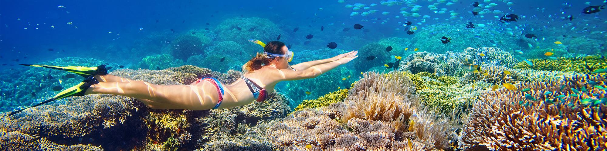 Marsa AlamSnorkeling Trips - Snorkeling Trips From Marsa Alam - Tours From Hurghada