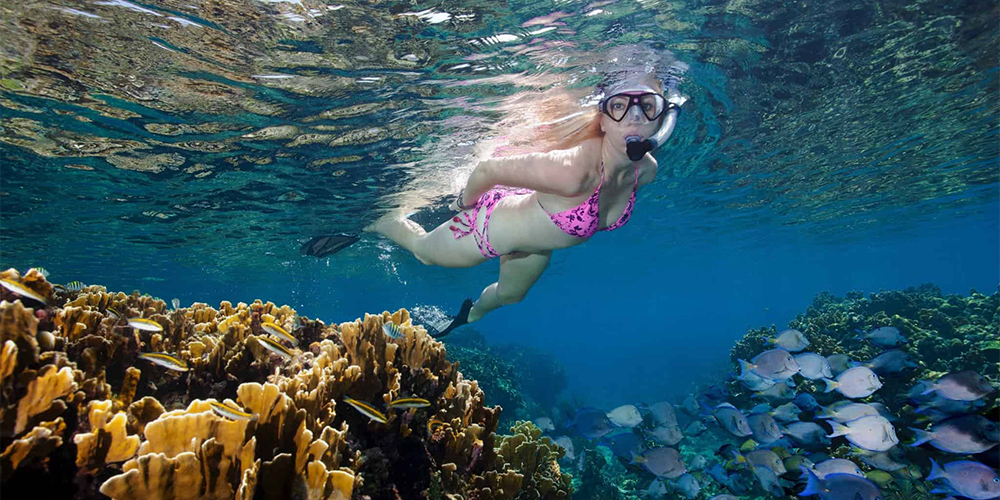 Snorkeling Trip at Hamata Island From Marsa Alam - Tours From Hurghada